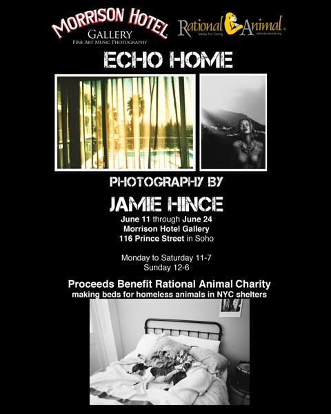 Jamie Hince Photo Exhibition!